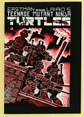 view Teenage Mutant Ninja Turtles Comic Book digital asset number 1