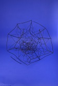view Geometric Model, L. Brill No. 201. Ser. 15 No. 6, Projection of a Polytope (One Hundred Twenty Cell) digital asset: Geometric Model, L. Brill No. 201. Ser. 15 No. 6, Projection of a Polytope (One Hundred Twenty Cell)