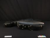 view Violoncello case digital asset number 1