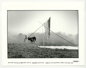 view Tom Law putting up the first tipi at Woodstock, Yasgur's cow looking on. Bethel, New York, 1969 digital asset: Tom Law putting up the first tipi at Woodstock, Yasgur's cow looking on.  Bethel, New York, 1969