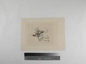 view Cuirassier digital asset: Cuirassier