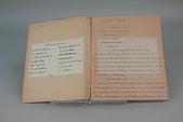 view Harriet Wiesner's 1917 School Composition Book for Civics and Home Economics digital asset number 1