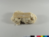 view Sample of Peruvian moderate rough raw cotton; Wonalancet Co., NH; 1913 digital asset number 1