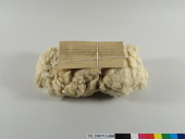 view Sample of Peruvian Mestizo raw cotton fiber; Wonalancet Co., NH; 1913 digital asset number 1