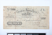 view 1 Pound, Colonial Bank of Natal, South Africa, 1864 digital asset number 1