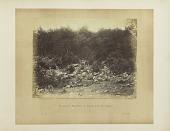 view Plate 44. Slaughter Pen, Foot of Round Top, Battle-field of Gettysburg digital asset number 1