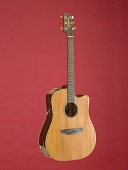 view Garth Brooks' Takamine Guitar digital asset: Guitar, shattered on stage by Garth Brooks