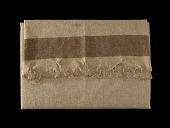 view Union Army blanket digital asset number 1