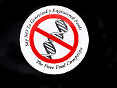 view Say No to Genetically Engineered Foods Button digital asset number 1