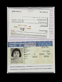 view Falsified Passport digital asset number 1