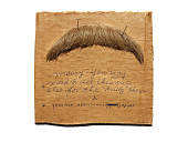 view false mustache worn by James Whitmore as Teddy Roosevelt in show Bully digital asset: Mustache worn by James Whitmore as Teddy Roosevelt in Bully