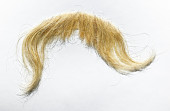 view false mustache, worn by James Whitmore as Oliver Wendell Holmes digital asset: Mustache worn by James Whitmore in The Magnificent Yankee