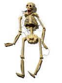 view Mr. Bones, The Dancing Skeleton marionette made by Alvin Slover and Florence Slover King digital asset number 1