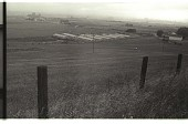 view Bracero Camp digital asset: View of the Gondo Labor Camp, Watsonville.