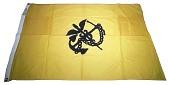 view United States Public Health Service Flag, Quarantine Flag digital asset number 1
