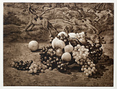 view Abundance digital asset: 'Abundance,' photogravure by Adolf Fassbender, 1937, part of portfolio 'Pictorial Artistry: The Dramatization of the Beautiful in Photography'