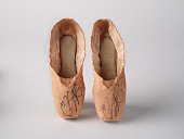 view Pancaked ballet shoes worn by Stella Abrera in January 2018 digital asset number 1