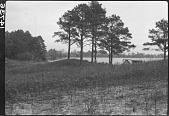 view Archaeological Site Along the Indian River Near Millsboro, Delaware digital asset: Archaeological Site Along the Indian River Near Millsboro, Delaware
