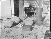 view Nanticoke Splint Wood Baskets and Mortar/Pestle of Gum Tree Wood digital asset: Nanticoke Splint Wood Baskets and Mortar/Pestle of Gum Tree Wood