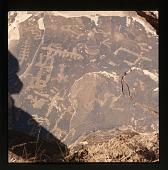 view Petrified Forest, Arizona: Petroglyphs digital asset: Petrified Forest, Arizona: Petroglyphs
