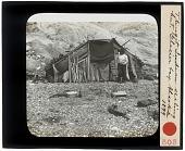 view Tlingit Indian sealing hut. Glacier bay digital asset: Tlingit Indian sealing hut. Glacier bay