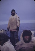 view Walrus hunt near Padloping, Island digital asset: S04820