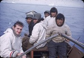 view Walrus hunt near Padloping, Island digital asset: S04821