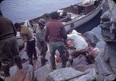 view Walrus hunt near Padloping, Island digital asset: S04828