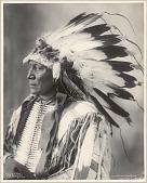 view Chief Hollow Horn Bear, Sioux, No. 1169 digital asset: Chief Hollow Horn Bear, Sioux, No. 1169
