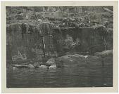 view Petroglyphs on Cormorant Island digital asset: Petroglyphs on Cormorant Island