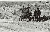 view Loiuse Lamone Family [Diné (Navajo)] in Horse-drawn Wagon digital asset: Loiuse Lamone Family [Diné (Navajo)] in Horse-drawn Wagon
