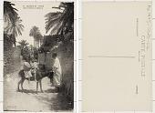 view Algeria SCÈNES ET TYPES - Dans l'Oasis à Biskra digital asset: Algeria SCÈNES ET TYPES - Dans l'Oasis à Biskra