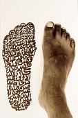 view <I>The Light Man's Historical Footstep</I> digital asset number 1