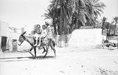 view Children on donkey, Karnak, Egypt digital asset: Children on donkey, Karnak, Egypt