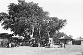 view Two masked performers wearing double-headed horizontal Chi wara headdresses, referred to as n'gonzon koun, Bamako (national district), Mali digital asset: Two masked performers wearing double-headed horizontal Chi wara headdresses, referred to as n'gonzon koun, Bamako (national district), Mali