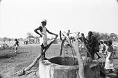 view Zebu cattle, goats and dromedary camels, Abouza, Zinder-Tanout region, Niger digital asset: Zebu cattle, goats and dromedary camels, Abouza, Zinder-Tanout region, Niger