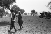 view Zebu cattle and goats, Abouza, Zinder-Tanout region, Niger digital asset: Zebu cattle and goats, Abouza, Zinder-Tanout region, Niger
