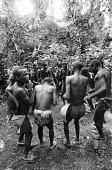 view Men's dance at edge of Ituri Forest, near Beni, Congo (Democratic Republic) digital asset: Men's dance at edge of Ituri Forest, near Beni, Congo (Democratic Republic)