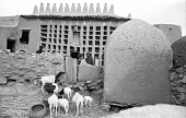 view Traditional mud brick village. Sanga, Mali digital asset: Traditional mud brick village. Sanga, Mali