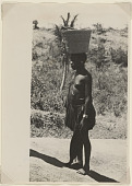 view Woman with basket on head near Mombasa, Kenya digital asset: Woman with basket on head near Mombasa, Kenya