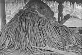 view Legba shrine, Abomey, Dahomey Kingdom, Benin digital asset: Legba shrine, Abomey, Dahomey Kingdom, Benin