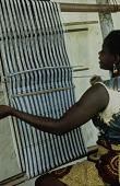 view Women's weave digital asset: Women's weave