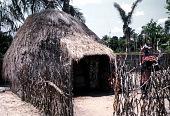 view Pende [Door-panel at Musanga Lubwe] digital asset: Pende [Door-panel at Musanga Lubwe]