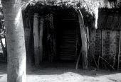 view Pende [Door-panel at Sotshi] digital asset: Pende [Door-panel at Sotshi]