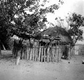view Pende [Chief's ritual house at Nianga] digital asset: Pende [Chief's ritual house at Nianga]