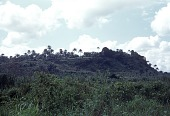 view Settlement along the edge of a small ridge, Achara Village, Afikpo Village-Group, Nigeria digital asset: Settlement along the edge of a small ridge, Achara Village, Afikpo Village-Group, Nigeria