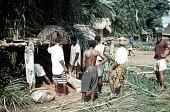 view Men's secret society erecting ajaba dressing house of Amozo ward, Mgbom village, Afikpo Village-Group, Nigeria digital asset: Men's secret society erecting ajaba dressing house of Amozo ward, Mgbom village, Afikpo Village-Group, Nigeria