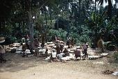 view Small cassava market, Unwana Village-Group, Nigeria digital asset: Small cassava market, Unwana Village-Group, Nigeria