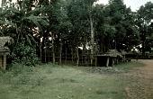 view Frame structure of men's secret society ajaba dressing house of Elogo ward, Mgbom village, Afikpo Village-Group, Nigeria digital asset: Frame structure of men's secret society ajaba dressing house of Elogo ward, Mgbom village, Afikpo Village-Group, Nigeria