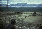 view [Landscape] : Kenya digital asset: [Landscape] : Kenya